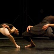 Festival plesa i neverbalnog kazališta Svetvincenat Savicenta